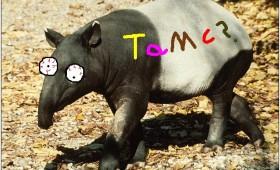 tAmC? – Pablo Garrido (G07)